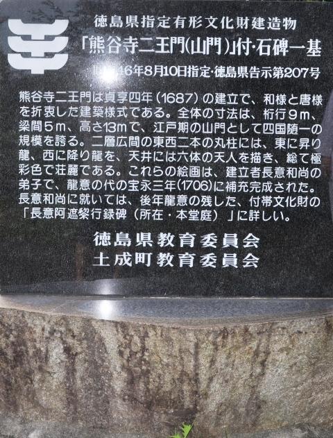 8番 (21).JPG