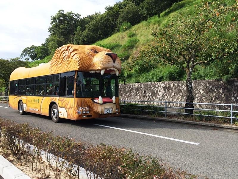 とべ動物園 (1).JPG