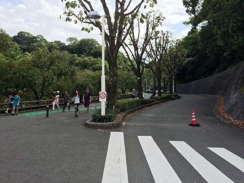 とべ動物園 (2).JPG
